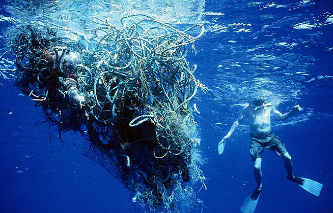 Plastic bags effects on human health - Plastic Waste Ocean Pollution Home